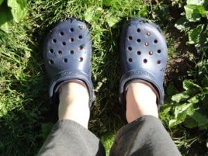 New Crocs