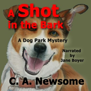 cover for soon-to-be-released audiobook