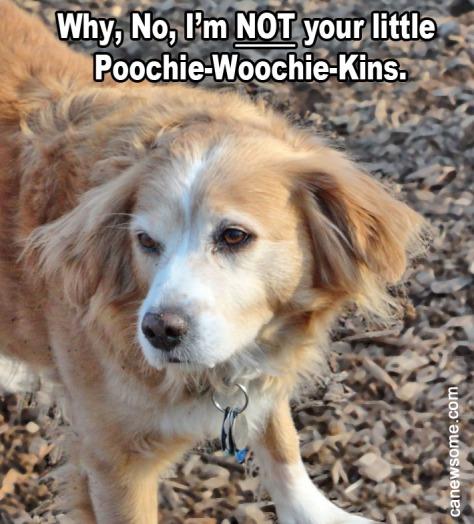 POOCHIE-WOOCHIE-KINS