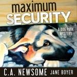 MaximumSecurity_AUDIO