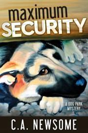 MaximumSecurity_FINAL copy